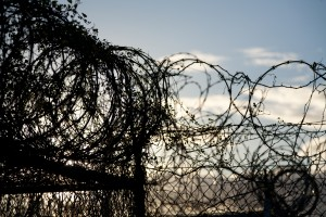 New barbed wire image2